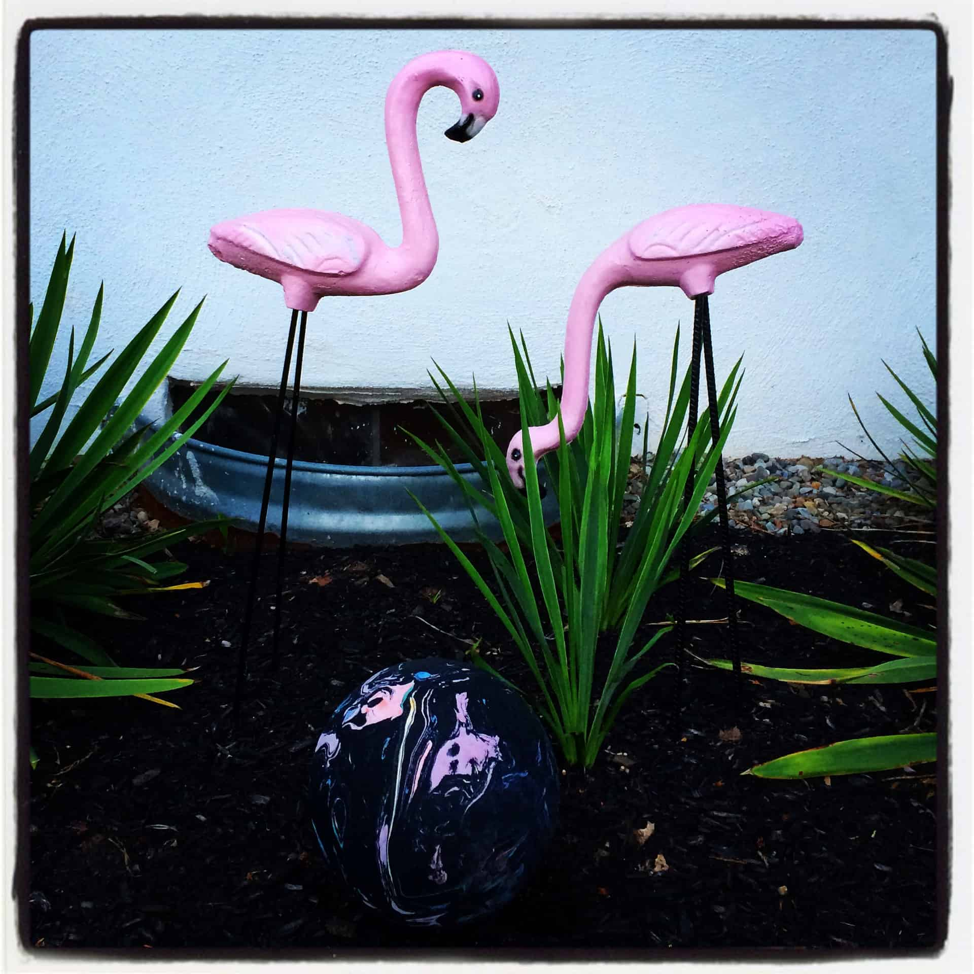 Pat's Concrete - White Marsh MD Flamingos